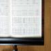 若手作曲家の新曲が物議 「伴奏楽器」にマンドレイク